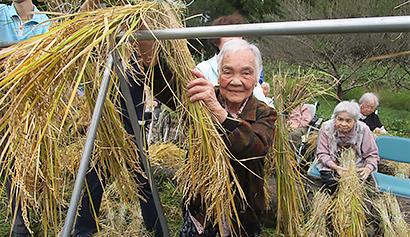 米つくり3